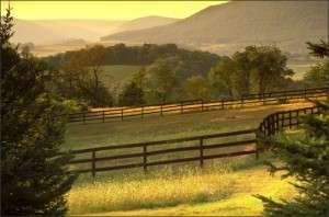 Pennsylvania Hills